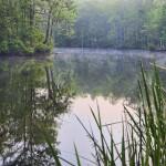 Washington County Waters - Conaby Creek